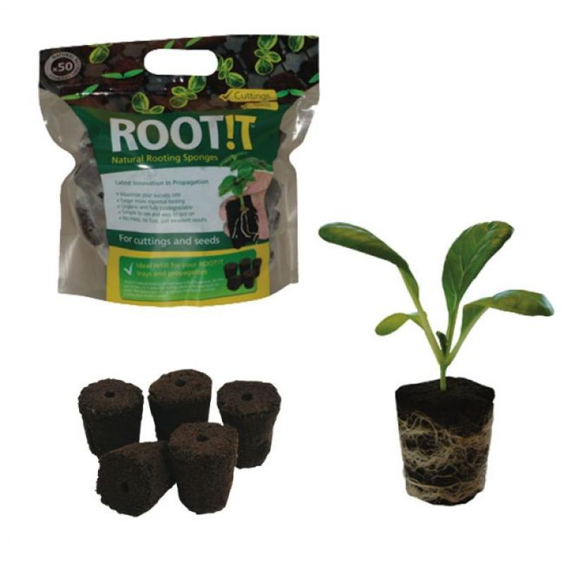 ROOT IT NATURAL ROOTING SPONGES - BOX 10x50ks