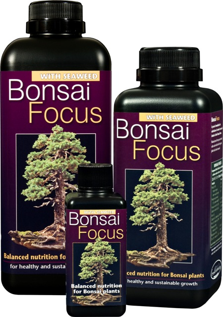 Bonsai Focus 300ml